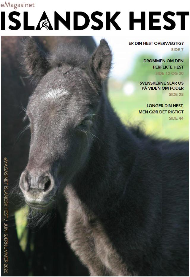 Islandsk Hest Særnummer Juni 2020