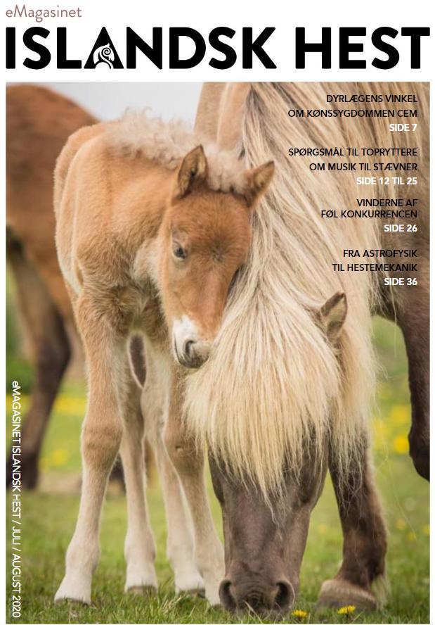 Islandsk Hest Juli-August 2020