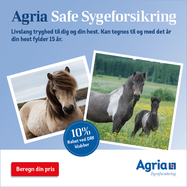 Agria Safe Sygeforsikring hest - Islænder