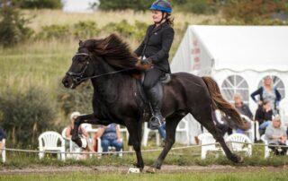 Britt og Klaki - fra rideangst til mesterskabsrytter