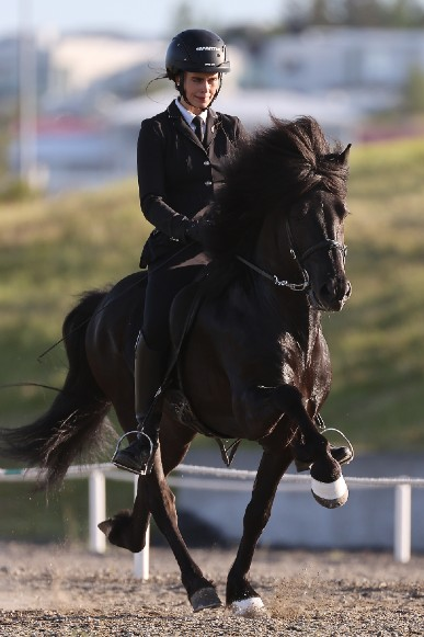 Rytter til hest